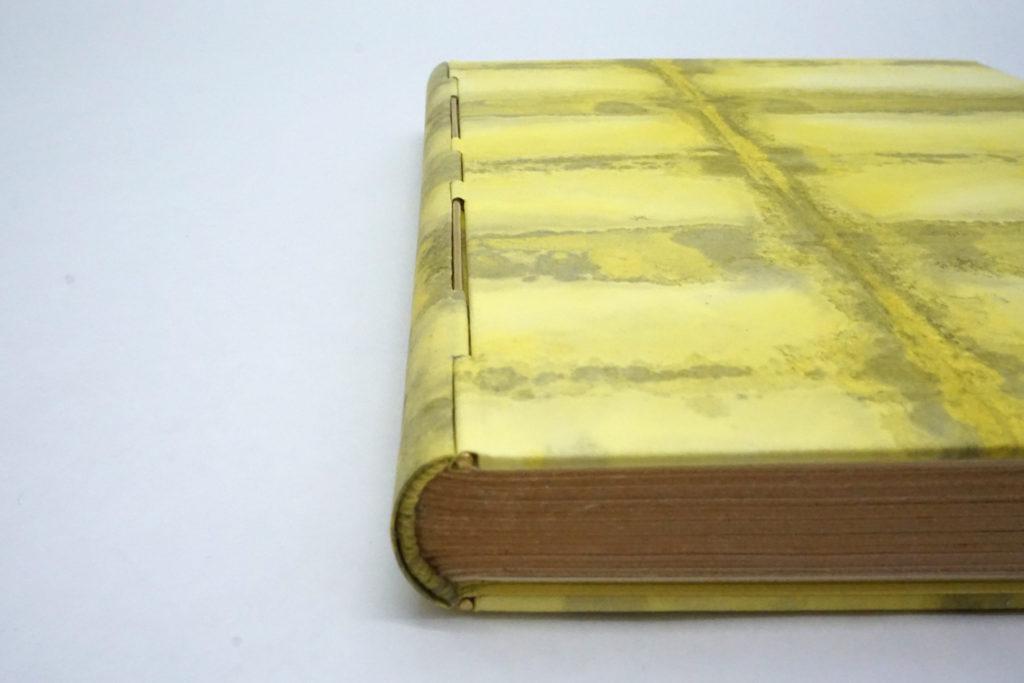 reliure-a-tige, rod-binding, reliure-tige, reliure-charniere, reliure-piano, bookbinding, reliure, reliure-art, reliure-contemporaine, fine-binding